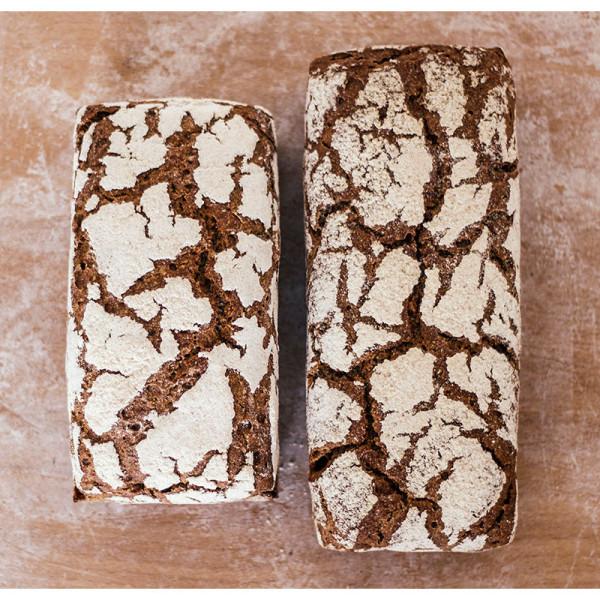 Pan integral ecologico de centeno. / Biopan