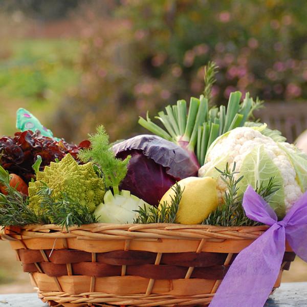 Cesta regalo verdura ecológica. / Hermisenda Huerta Natural / Huerta Lunera