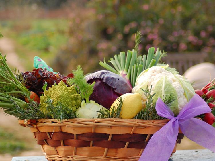 Cesta de verdura ecológica para regalo